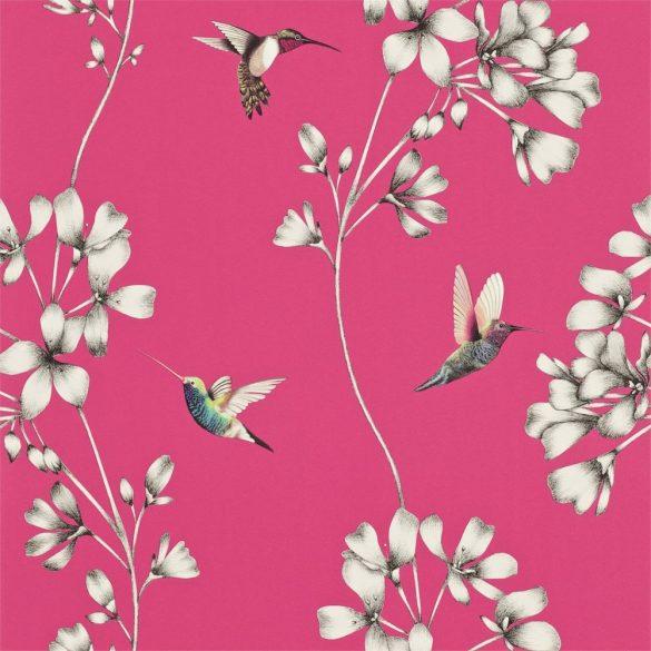 Harlequin Amazilia Flamingo 111058